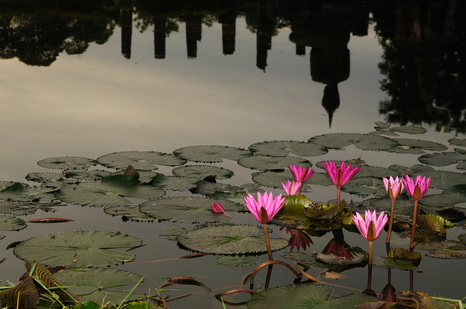 Early morning in Sukhothai