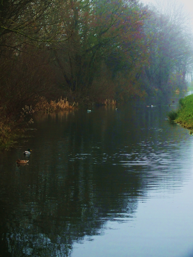 Early morning on the Canal