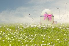 Easter backdrop 3
