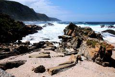 Eastern Cape, Wilde Küste