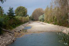 Ebbe im Rhein (1)