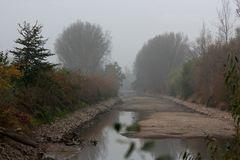 Ebbe im Rhein (3)