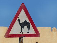 Eben aus dem Oman zurück