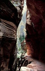 Echo Canyon, Zion NP