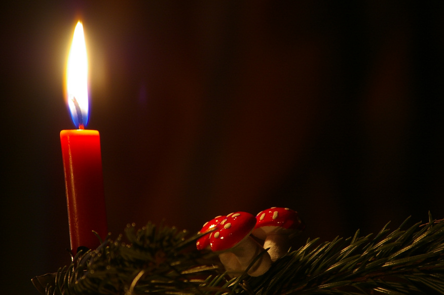 Echte Kerzen am Weihnachtsbaum