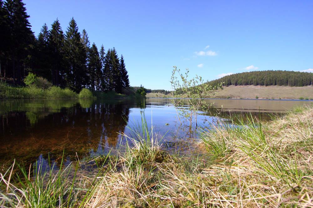 Eckertalsperre im Harz
