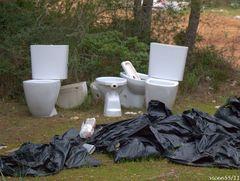 Ecologismo y limpieza