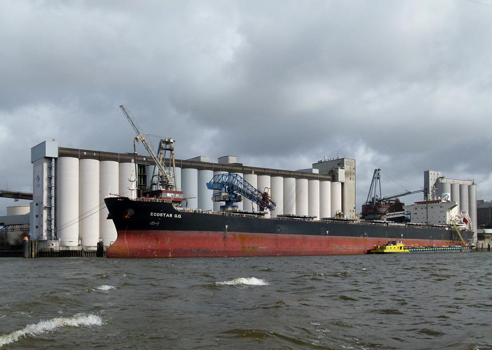 Ecostar GO   -   Bulk-Carrier