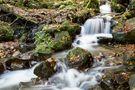Flusslandschaft von Peter Giefer