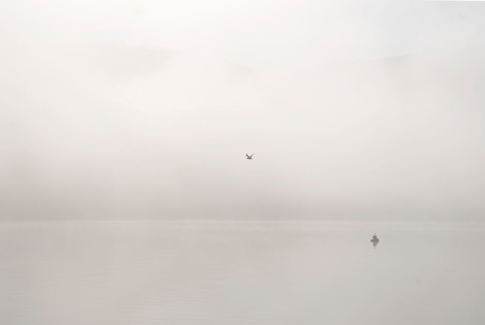 Edersee im Nebel