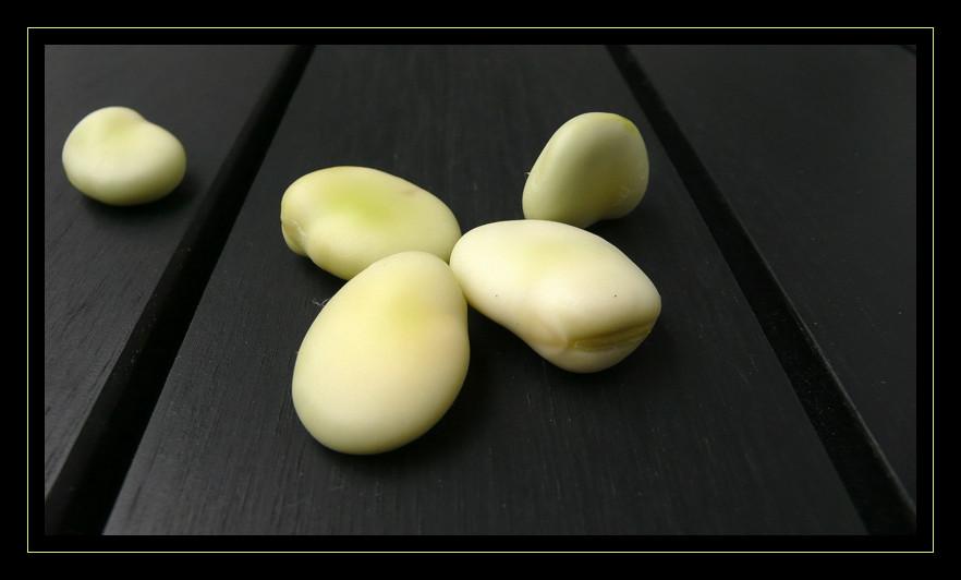 Edle Saubohnen