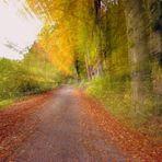 effetto veloce di bosco autunnale