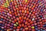 Eggs & colors!