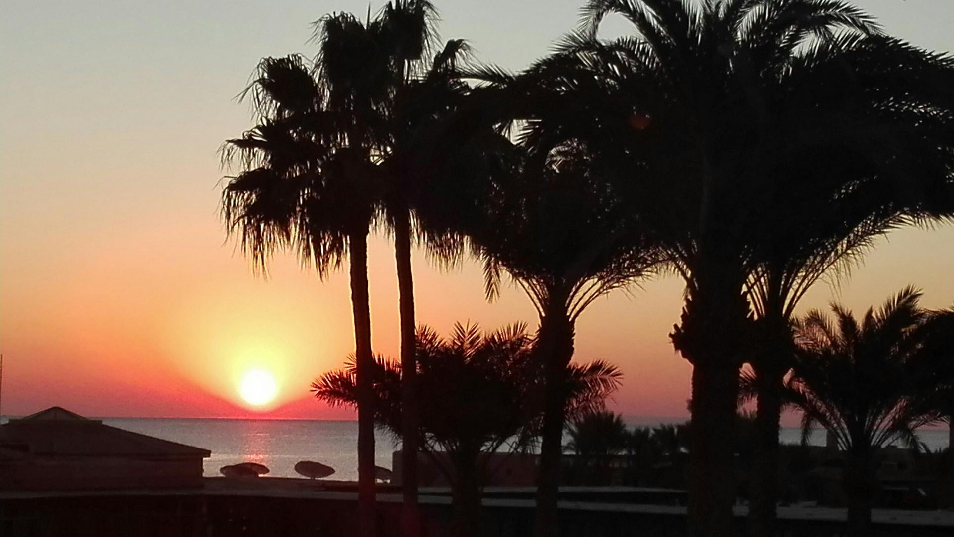 Egyptian sunrise . . .