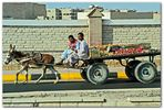 Egyptian Transport ²