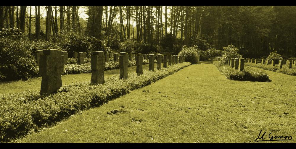 Ehrenfriedhof Diersfordt II