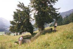 Eibe Balderschwang