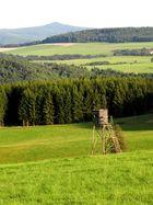 Eifellandschaft im Sommer mit einem Hochsitz und der Hohen Acht