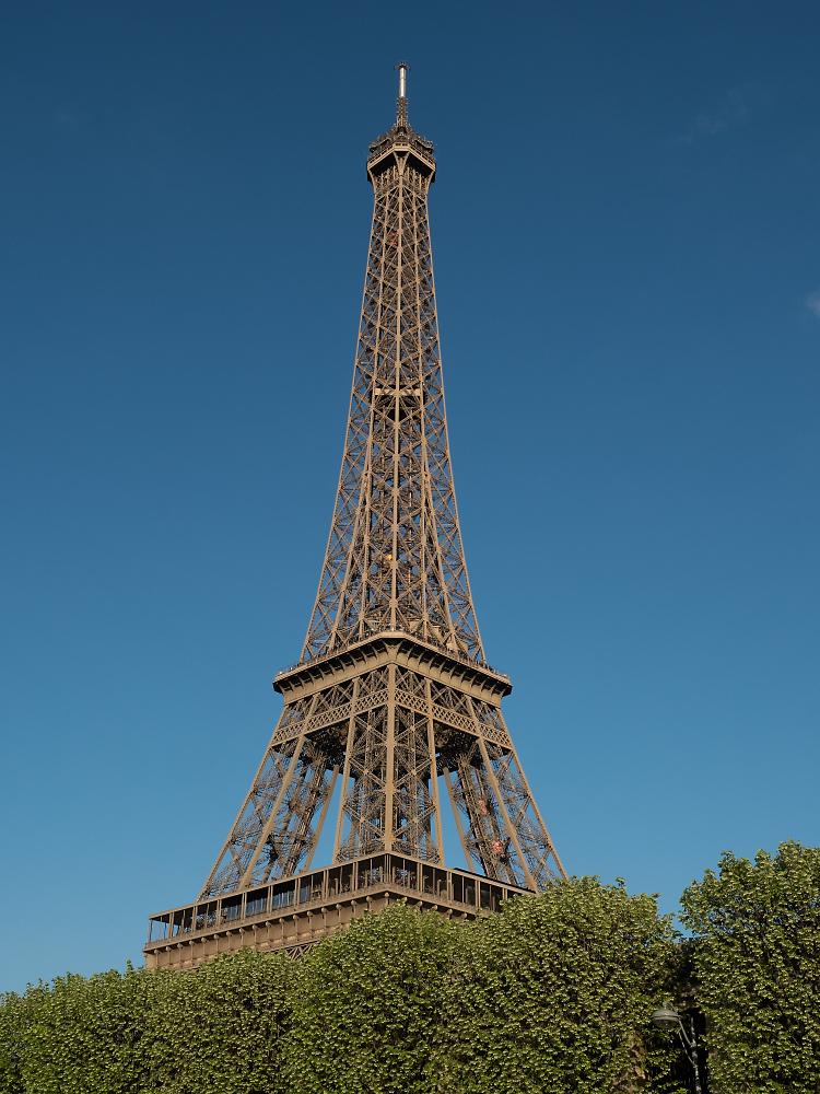 Eiffelturm hinter Hecke