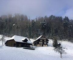 Eigenthal im Winterkleid ...
