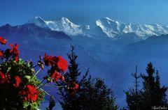 Eiger-Mönch-Jungfrau Massif