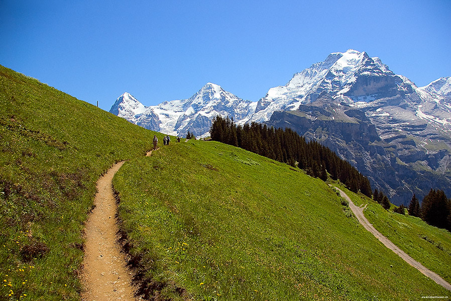 Eiger, Mönch und Junfrau