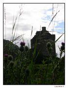 Eilan Castle, Ecosse