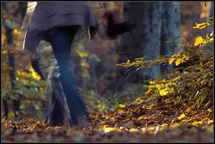 Eilig in den Herbst...
