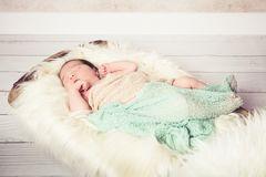 Ein 14 Tage altes Nordlicht - Newborn Fotografie