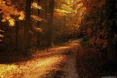 Ein Abend im Herbst