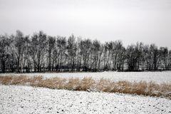 ein Ackerbild im Winter