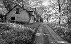 Ein altes Haus mitten im Wald