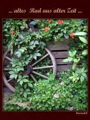 ... ein altes Rad ... aus alter Zeit ...