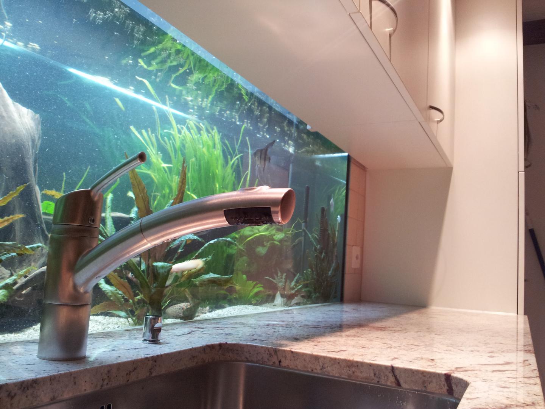 Ein Aquarium in der Küche
