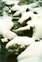 Ein Bachlauf im Winter!