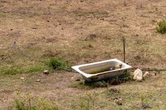 Ein Bad