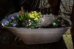 Ein Bad für den Frühling
