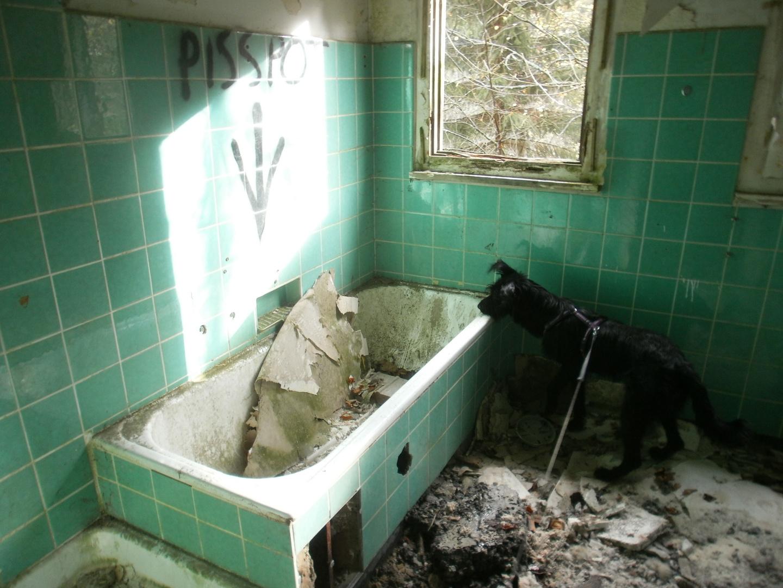 ein Bad gefällig?