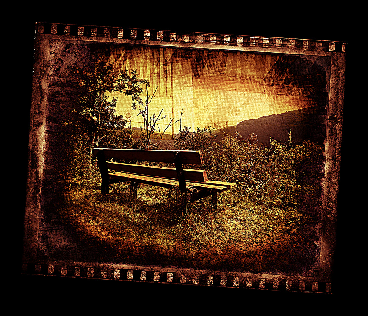 Ein Bänkchen im Wald