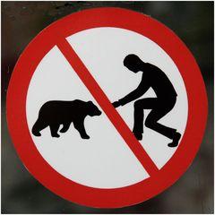 Ein Bär ist kein Eichhörnchen!