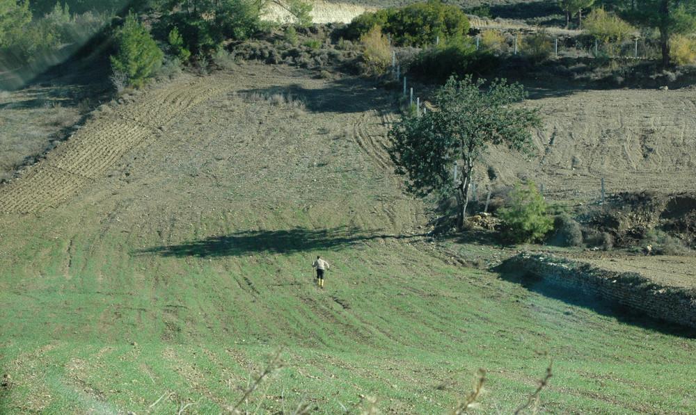 Ein Bauer bearbeitet sein Feld