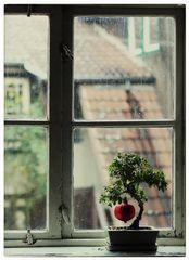 ein Baum träumt... von Weihnachten