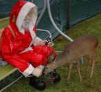 Ein besinnliches Weihnachtsfest und ein gutes, neues Jahr