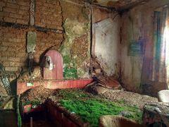 Ein Bett im (Korn-)Moosfeld