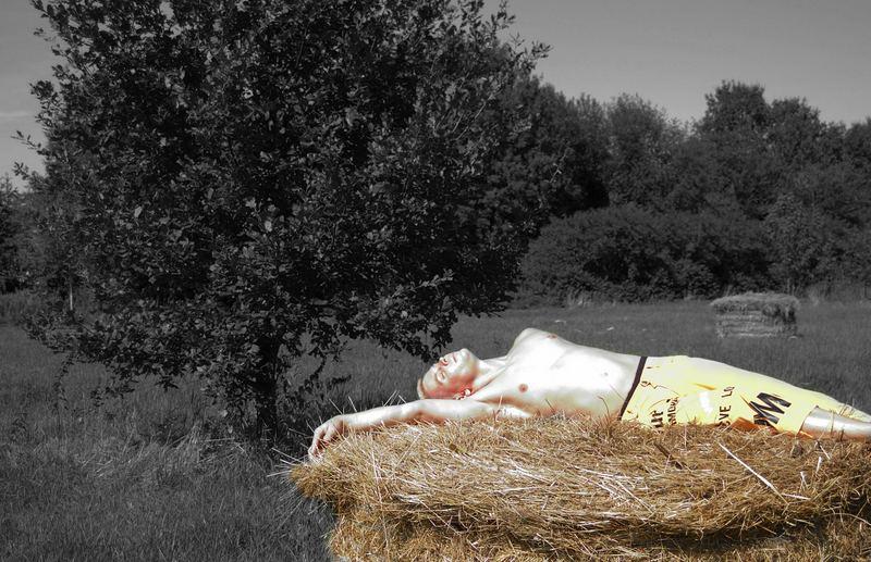 Ein Bett im Kornfe...äh...Strohballen