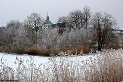 """Ein bischen """"Grün"""" für Alle die keine Winterbilder mehr sehen mögen"""