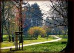 ein bißchen Frühling im Stadttpark