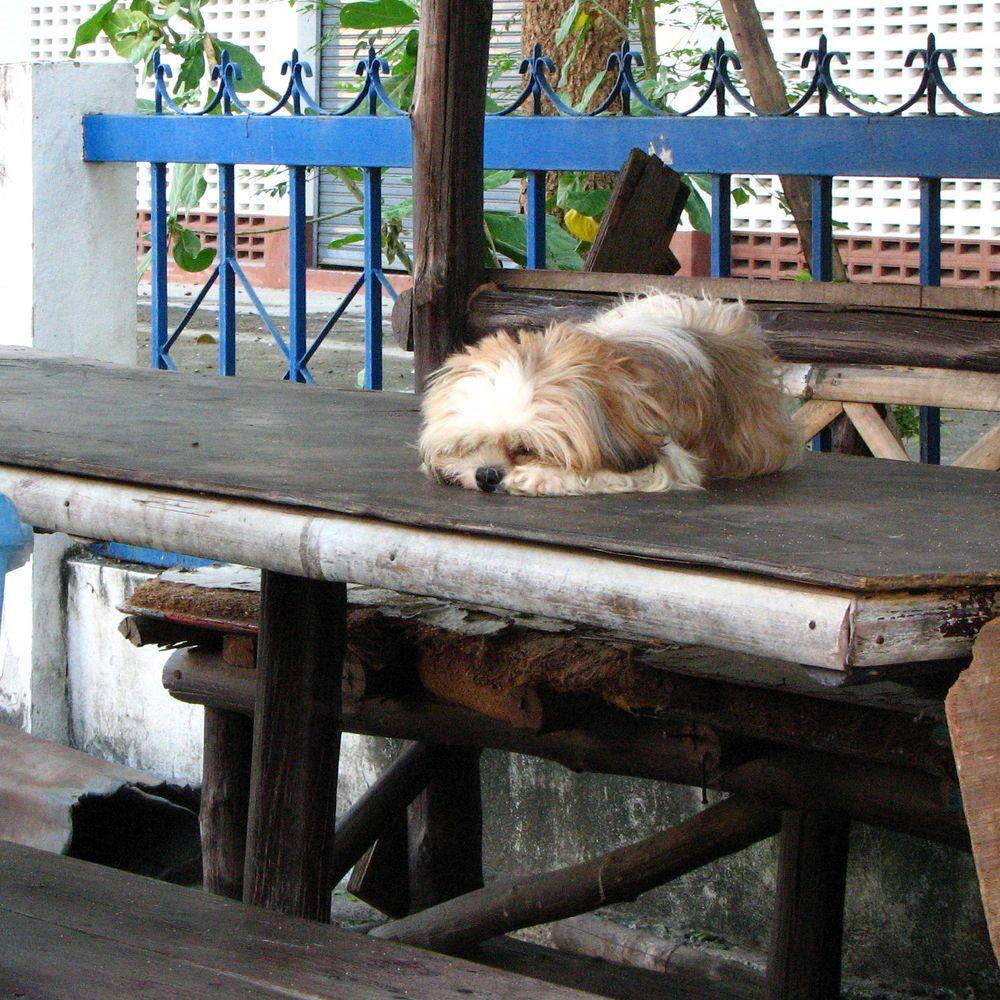Ein bisschen müde...
