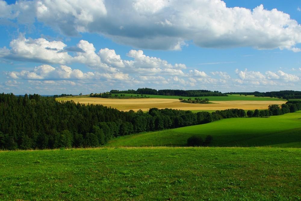 Ein bisschen Vogtland