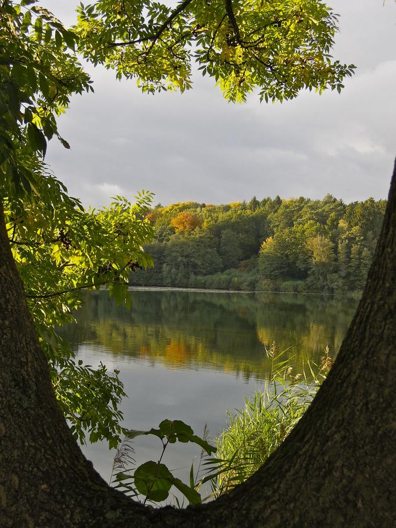 Ein Blick über den See...